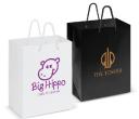 Medium Laminated Carry Bag