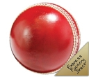 Match Grade Cricket Ball