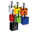Medium Size Cooler Bags