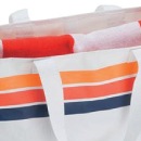 Beach and Picnic Bags