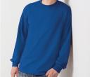 Ultra Cotton Adult Long Sleeve T Shirts
