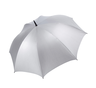 Virginia Umbrella Silver Tops